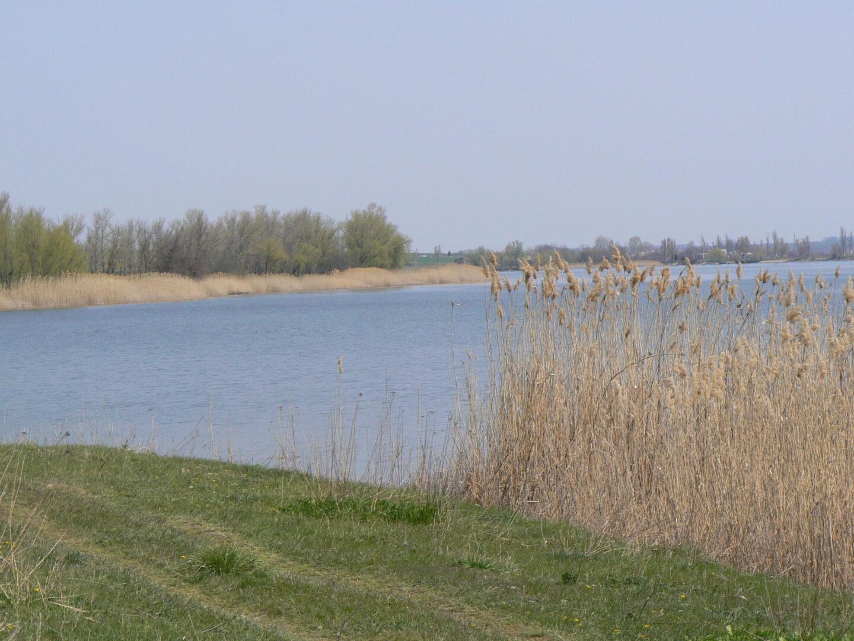 озеро Раздолье
