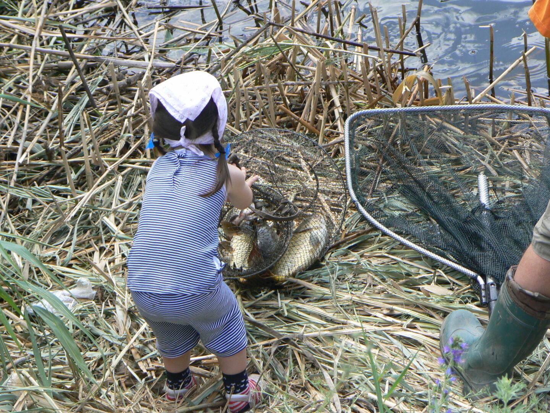 Рыбалка в селе Раздолье
