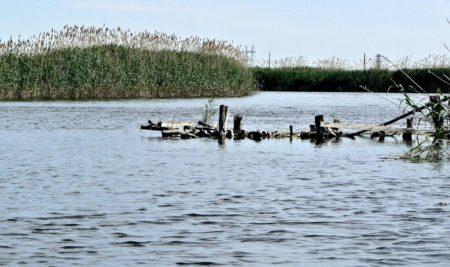 Как ловить рыбу  не нарушая законы (рыбалка во время нереста)?