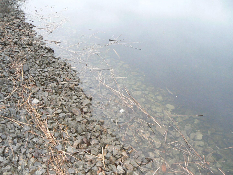 Канал берег