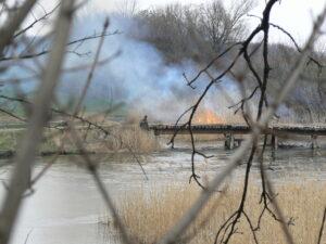 Мост через реку Волчья Приволчанка