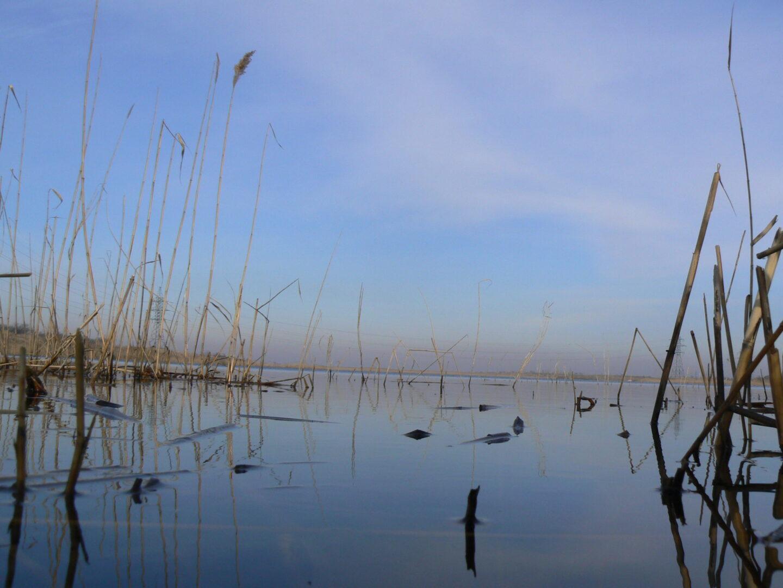 Река Самара весной