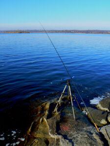 Фидер на реке Днепр