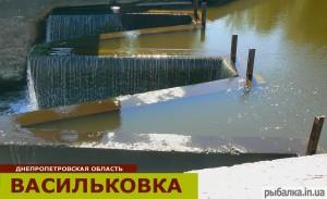 Рыбалка в Васильковке