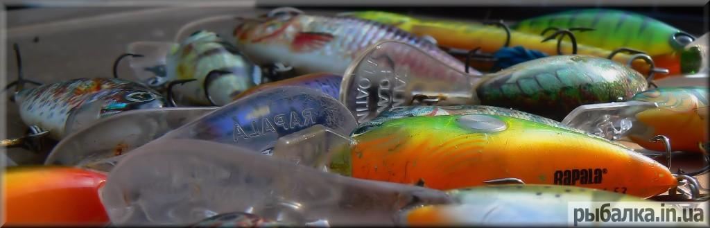 рыбалка толстолобик видео наживки снасти
