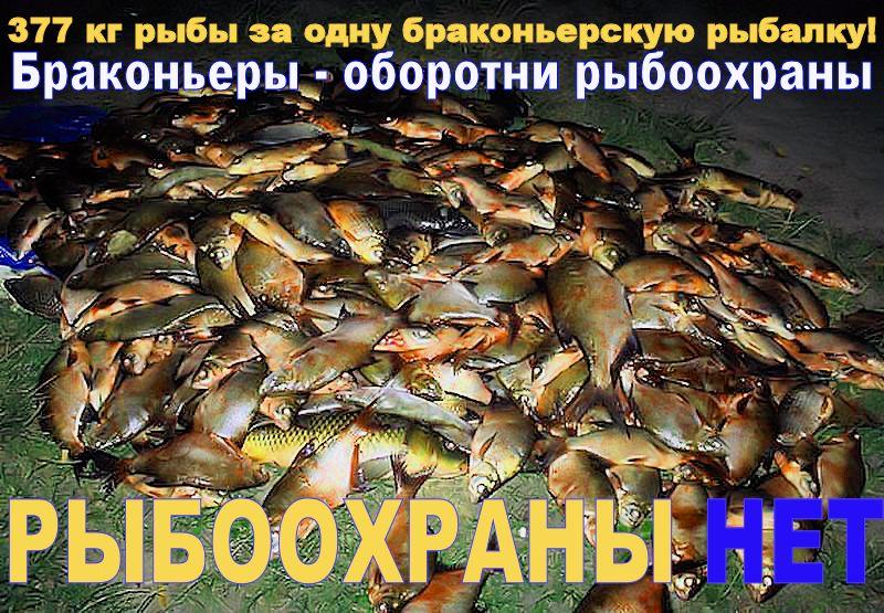 рыбоохрана