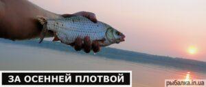 Водоёмы Украины