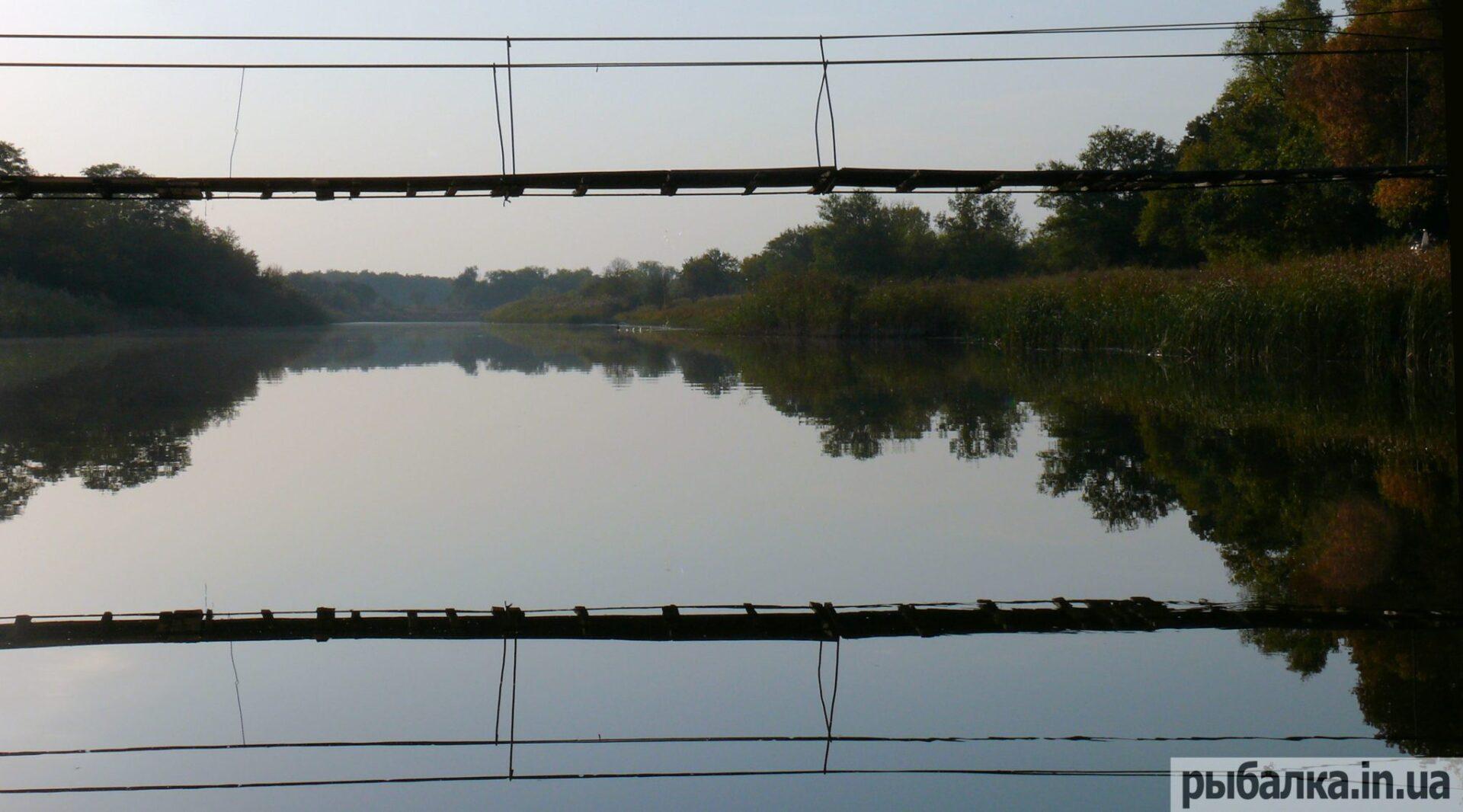 рыбалка на реке обуховская
