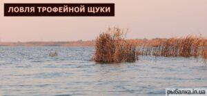 Разливы Самары