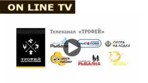 TV - TROFEY