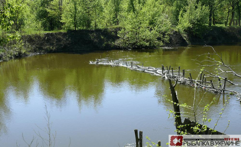 Река Самара Васильевка перемет