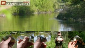 Рыбалка на малой реке Самара