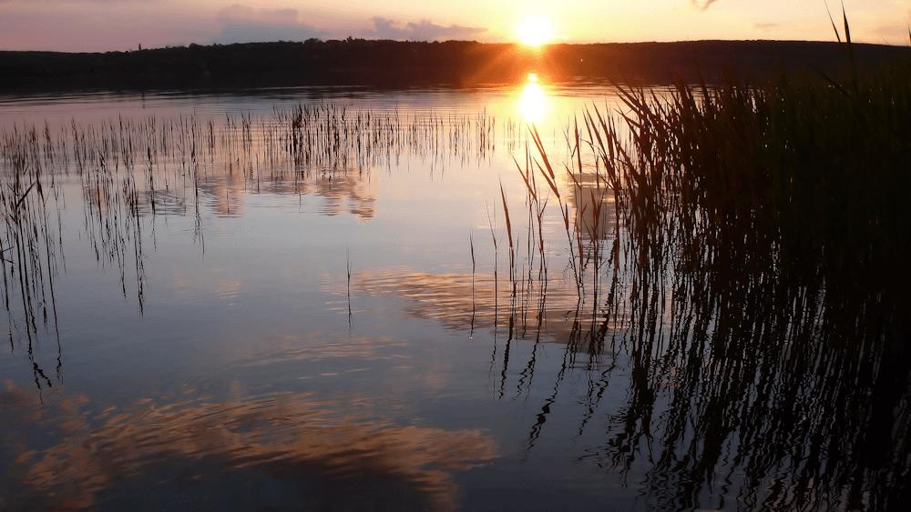 Перспективное место рыбалка весной