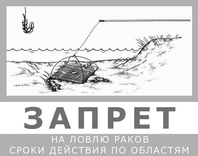 запрет на ловлю рыбы в 2017 году на спиннинг