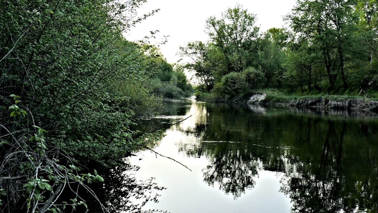 Река Самара в селе Васильевка фото