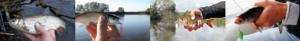 Рыбалка в Украине / Ловля на Кокетку