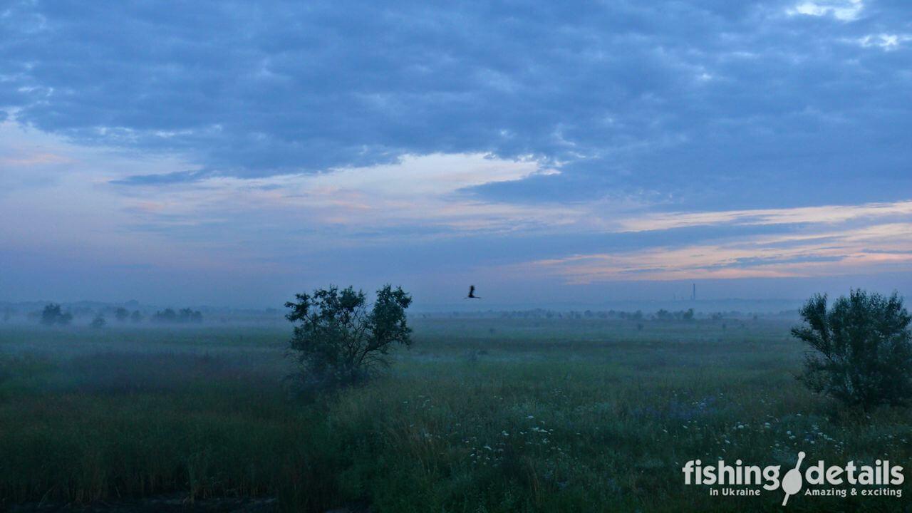 Фото Утренняя пойма реки Самара