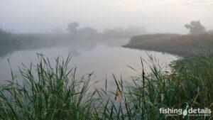 Фото Утренняя река Самара
