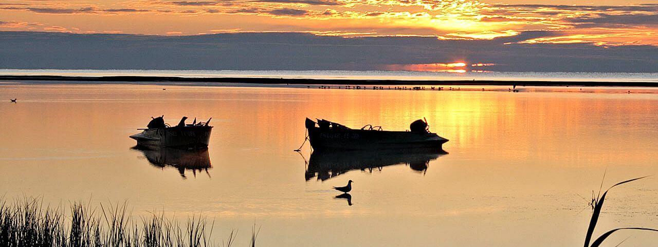 Foto Fishing in the Odessa region