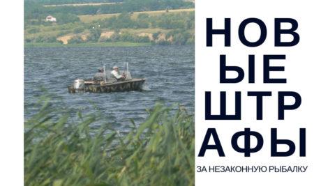 Новые штрафы за нарушение правил рыбалки в Украине