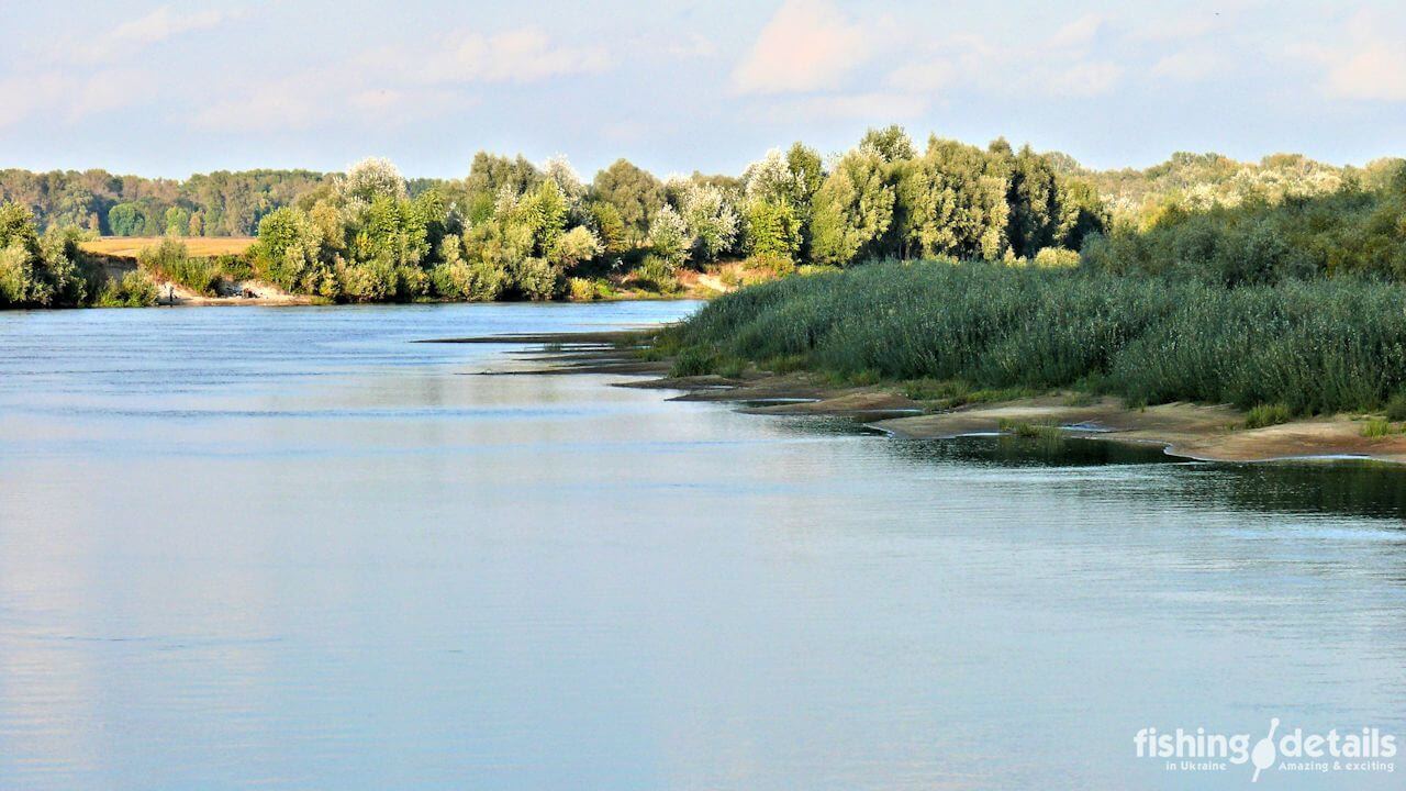 Река Десна песчаные косы