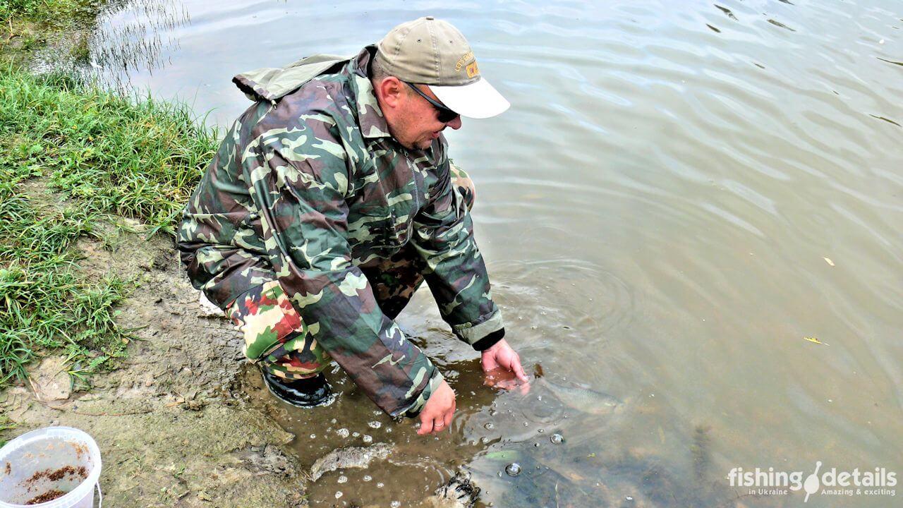 Рыбалка на реке Мена - Фото - плотва на воле