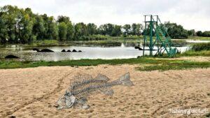 Рыбалка на реке Мена - Фото - Тайна менского озера