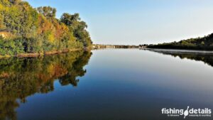 Утро на реке Десна