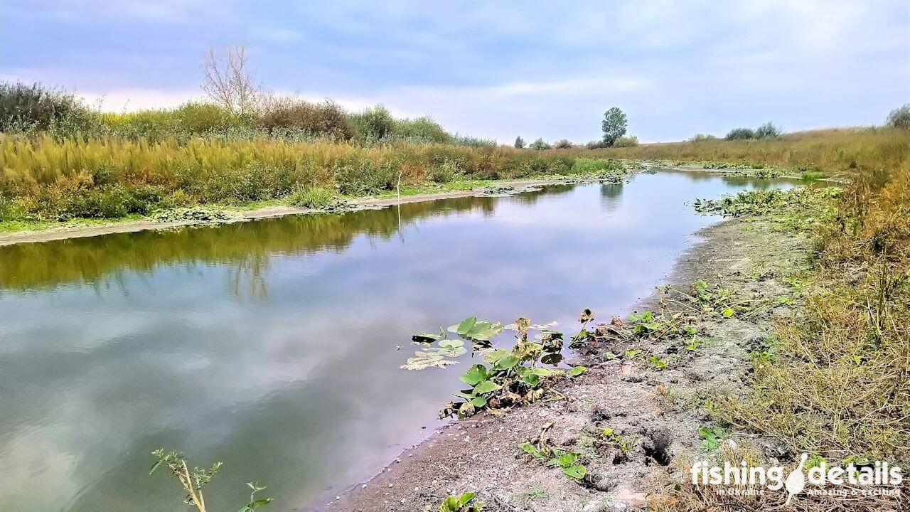 Река Десна речище