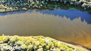 Вид сверху Река Десна