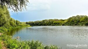 Рыбалка на Десне 2021 - Место лова